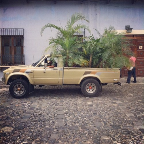 Mobile garden #backpacking #guatemala  (Taken with Instagram at Antigua, Guatemala)