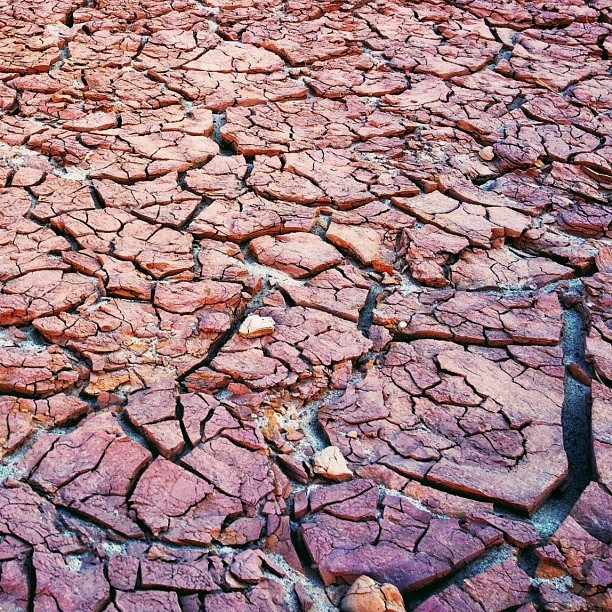 Desiccation cracks a.k.a. mud cracks #GrandCanyon / on Instagram http://instagr.am/p/MXScN7QohS/