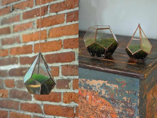 cerulean-flames:   ABJglassworksHandmade glass terrariums  Via: http://www.bookspaperscissors.com/