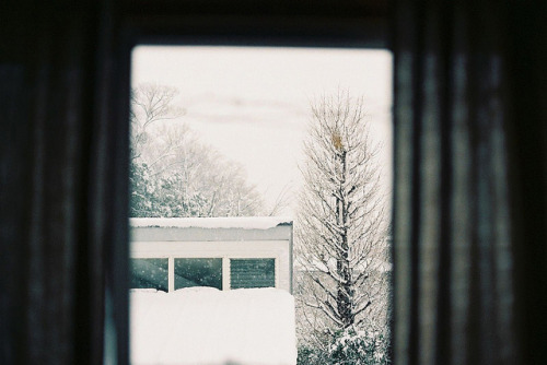 foxilate:  snow by hiki. on Flickr.