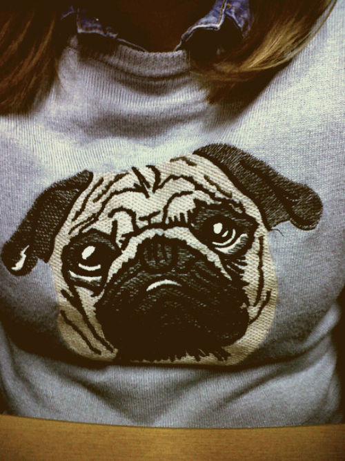 If you loved me, you would get me this sweater…with pug to match.