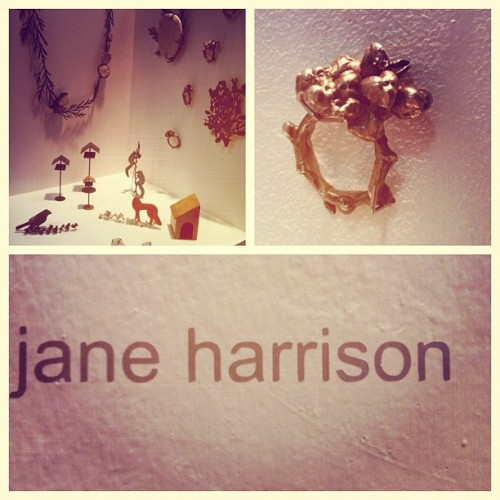 #newdesigners #jeweller #janeharrison #casting #nature #jewellery #enamelling #metalwork #mixedmedia #contemporary #applied #arts #london #graduate #2012 #gsa (Taken with Instagram)
