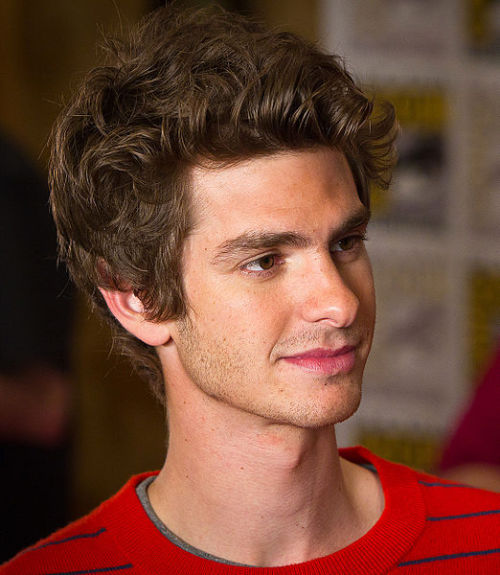 "Spider-Man Andrew Garfield 'honoured' by Doctor Who legacy  Andrew Garfield, soon to be seen in cinemas donning the Spider-Man costume, has been speaking about the honour of having appeared in Doctor Who. As part of the publicity for The Amazing Spider-Man – which opens in cinemas on 3 July – the 28-year-old British actor was being interviewed on Radio 5 Lives' recent edition of Mark Kermode and Simon Mayo's Film Reviews. During the interview, Garfield was asked about his time on Doctor Who. He appeared in the BBC-produced science-fiction series in 2007. His character, Frank, joined David Tennant's Tenth Doctor and Freema Agyeman's Martha Jones as a temporary companion for two episodes involving the show's oldest and most iconic monsters, the Daleks – Daleks in Manhattan and Evolution of the Daleks. Of his time on the show, Garfield said, ""The history of Doctor Who and the heritage and legacy of Doctor Who is huge. It was an honour to be a part of that show, absolutely […] I'm honoured to be a part of that legacy."""