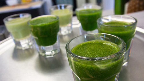 Are the benefits of wheatgrass overblown?Advocates say the chlorophyll in wheatgrass can rid the body of toxins, strengthen the immune system and improve how the digestive tract functions.