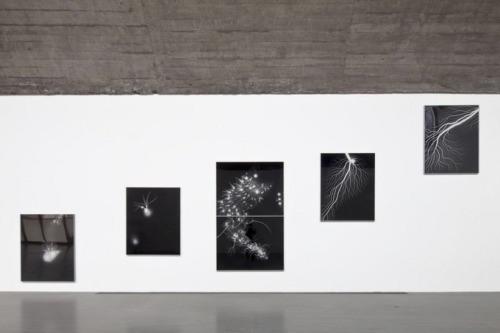 "pacegallery:  ArtForum highlights Hiroshi Sugimoto's current exhibit at Pace Beijing.  The Lightning-Field works shown here ""register the likeness of energy itself through negatives exposed to a charge.""  If you are in Beijing please be sure to stop by this exhibit, open until July 7th, 2012."