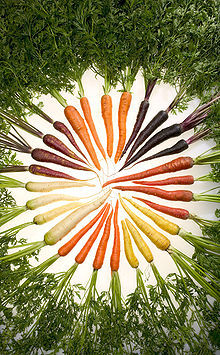 WHERE are THOSE carrots in the AVERAGE grocery story?
