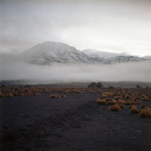 archenland:  (by Robert Kaczynski)