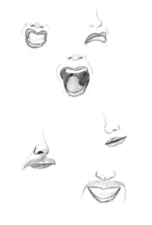Nose and mouth studies.
