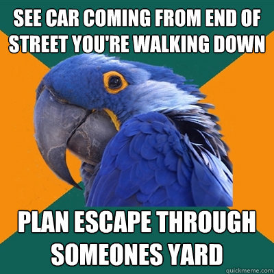 paranoidparrotmeme:  Paranoid Parrot  Hehe I think I am the human embodiment of Paranoid Parrot.
