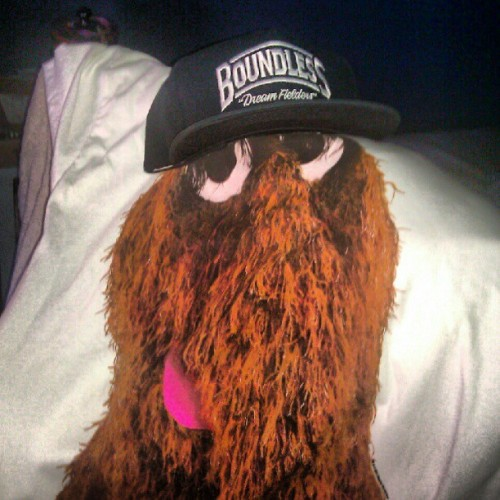 Guess who's comin out with me tonite! Mr. #Snufalufagus #Snuffy #BoundlessNY #SesameStreet #BONG  (Taken with Instagram)