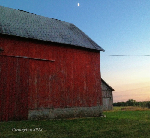 Starlight over the barn. June 26, 2012.