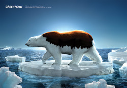 The Feature of the Ice Bear. Global Warming, Greenpeace Ad