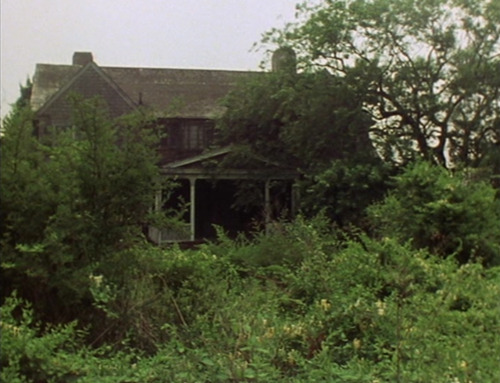 midnightnymph:  Grey Gardens - Albert and David Maysles - 1975