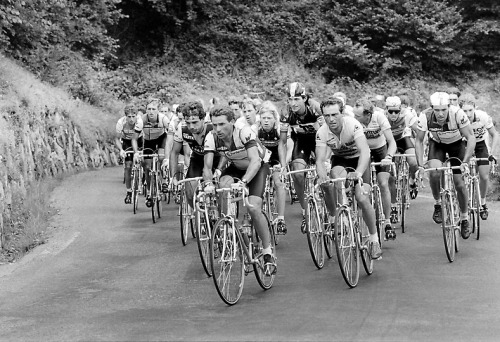 The peloton climbs the mountain pass of Tourmalet on July 16, 1985 during the 17th stage of the 72th Tour de France between Toulouse and Luz-Ardiden. French cyclist Bernard Hinault went on to win the race. (AFP/Getty Images) (via Photos: Tour de France through the years | Denver Post Photos, Video)