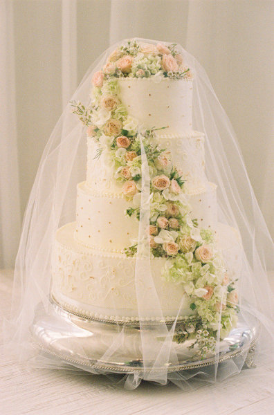 heyweddinglady:  Have you ever seen a cake wearing a veil? I don't think I have