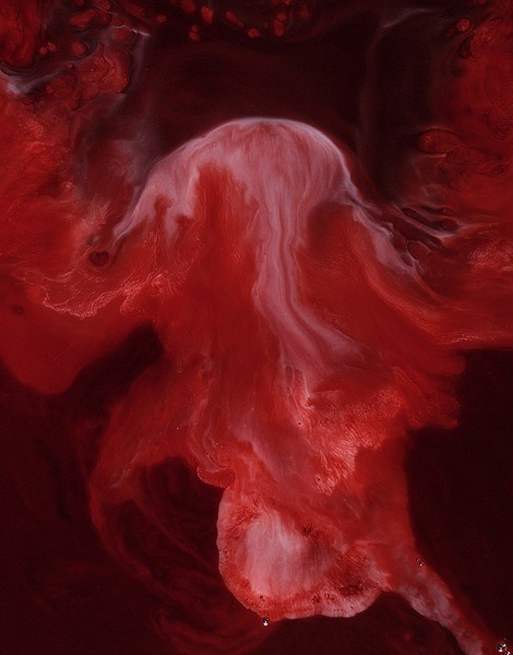 Photographs of milk and blood by Frederic Fontenoy via:ryandonato