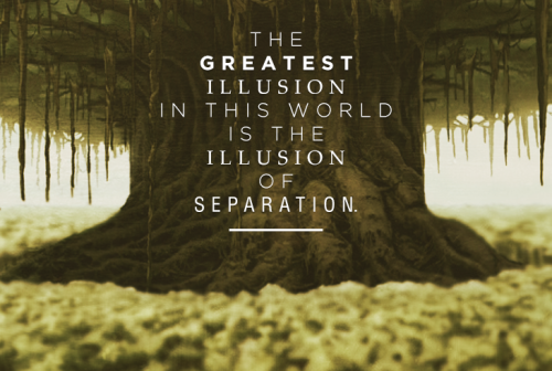 """The greatest illusion in this world is the illusion of separation. Things you think are separate and different are actually one and the same."" -Guru Pathik Death is never the end."