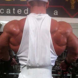 drwannabe: Joey Sergo's back [view all photos of Joey]