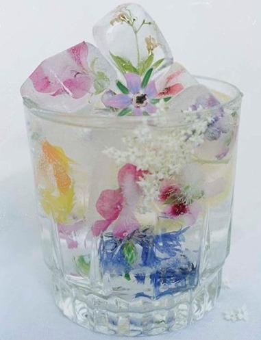 flowers frozen into ice cubes