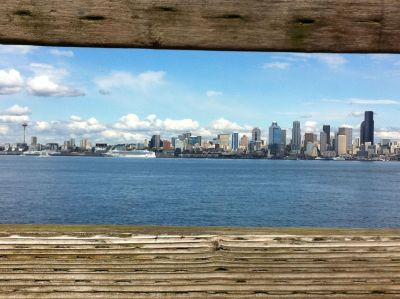 downtown seattle as seen from across elliott bay.