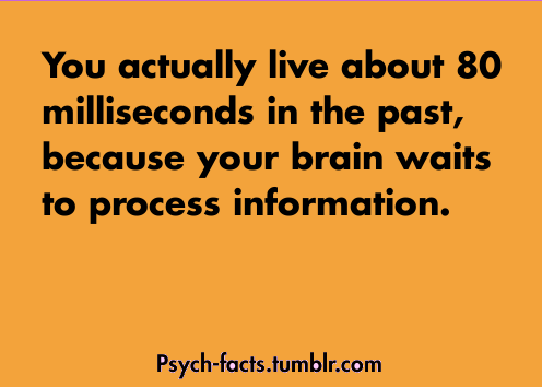 Is that even possible? Mind. Blown.