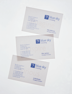 Print Design Client: Blue Sky Scope: Complete brand design and implementation across a range of corporate items, promotional and training materials Design: TTL Design