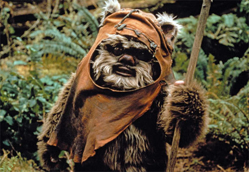 hellogiggles:  LISTS OF STUFF: WHY EWOKS WOULD BE THE BEST PET-FRIENDS EVER by Annie Stamell  Seriously how cute are they, right?