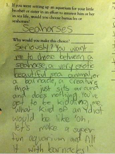 I would seriously hire this kid.