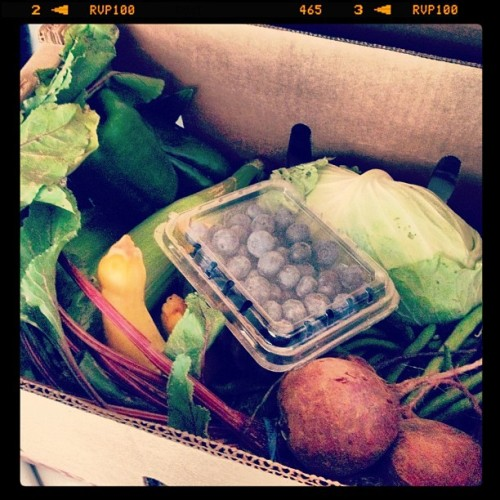 I am going to cook all the things!  #vegan #vegetables #csa  (Taken with Instagram)