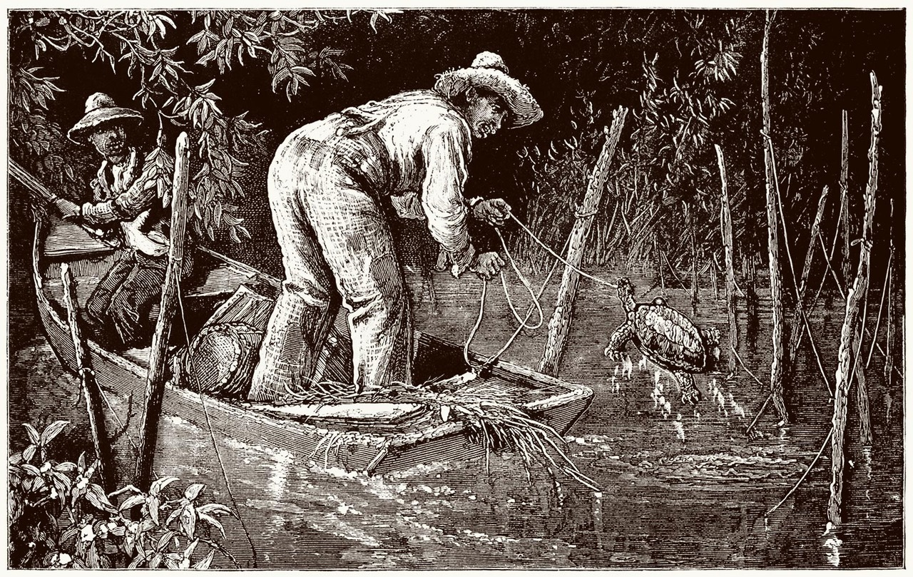 oldbookillustrations:  On a snapping turtle farm, near Annapolis.  From America revisited vol. 1, by George Augustus Sala, London, 1883.  (Source: archive.org)