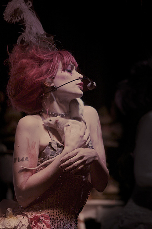 18 / 100 pictures of Emilie Autumn. +
