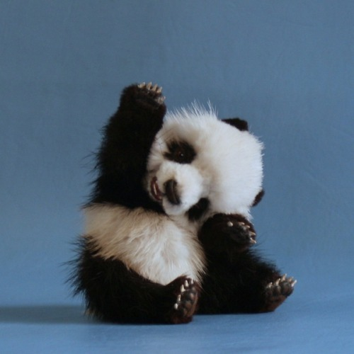 artofoverwhelm:  Baby panda.