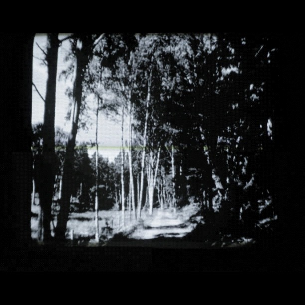 Path #instacrt (Taken with Instagram)