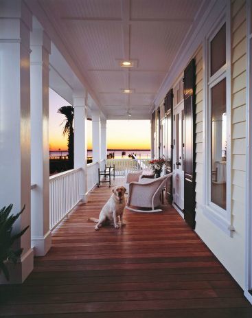 Perfect porch. Perfect pooch. :) Follow CollegeGuyDesign if you like things like this showing up on your dash!