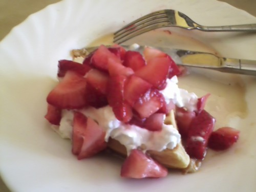 curlyqrunner:  rhysispiecess:  I had waffles for breakfast.  So did I.  imapronoun so did I
