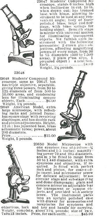From the electronic to the scientific: a range of microscopes.