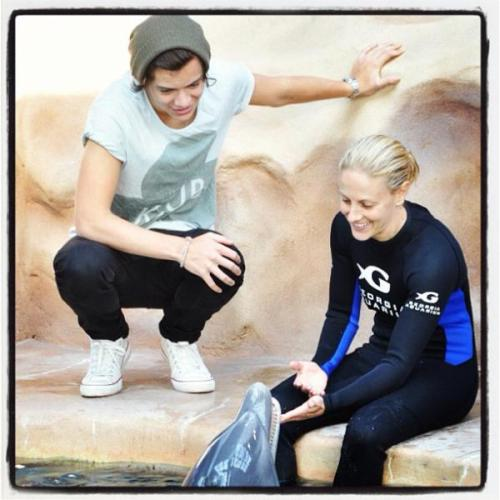 Harry at the Georgia Aquarium [x]