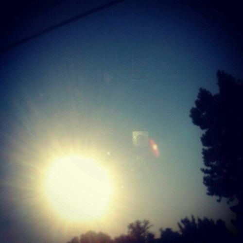 aliveandunbroken:  Now we're swallowing the shine of the summer (Taken with Instagram)