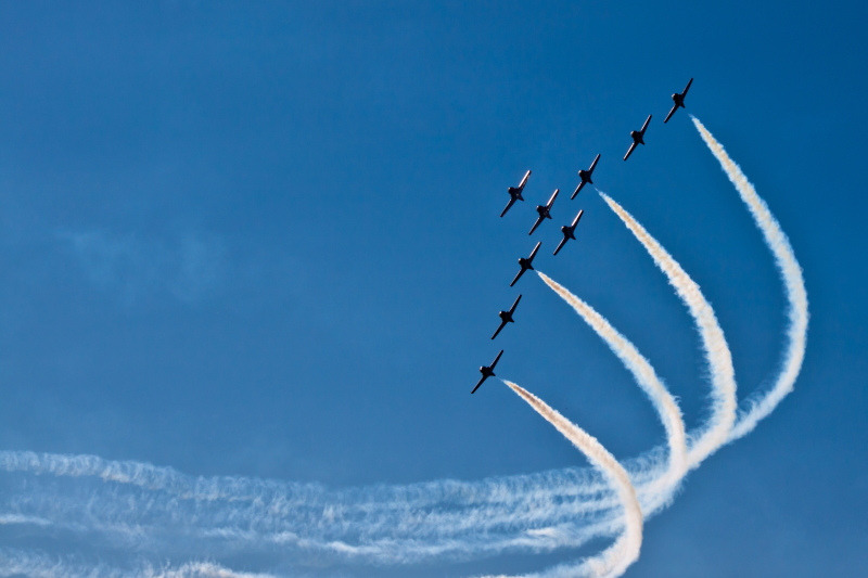 Snowbirds 42 (by LongInt57)