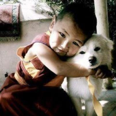 Until one has loved an animal, a part of one's soul remains unawakened.   ANATOLE FRANCE