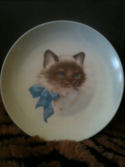 When I grow up, I'm going to only have plates like this… But of my cat >.<