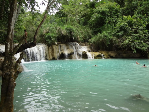 Waterfall swimming hole near Luang Prabang, Laos