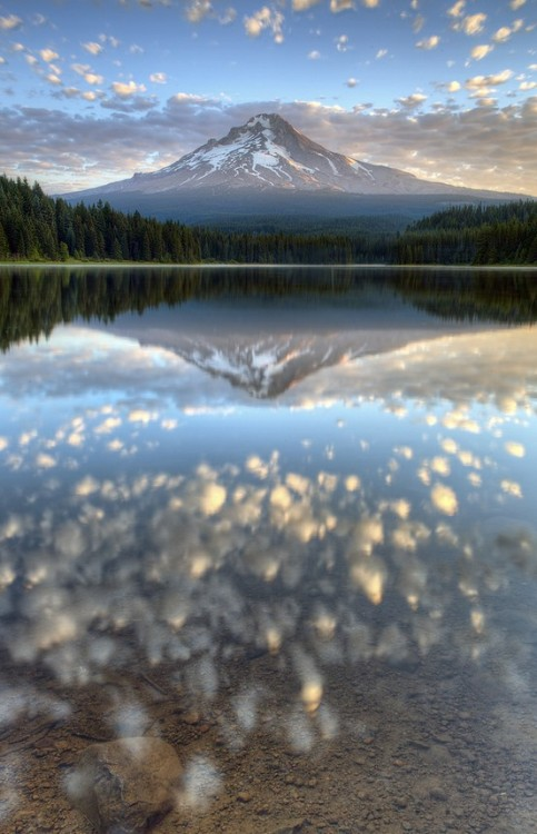 bluepueblo:  Reflection, Mt. Hood, Oregon photo via carol