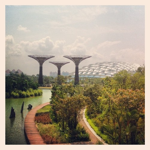 papertissue:  😍 (Taken with Instagram at Gardens by the Bay)