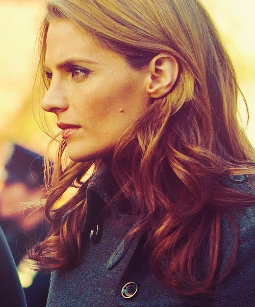 Stana Katic (Kate Beckett in Castle)