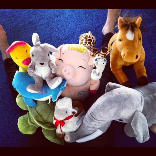 29. Soft #photoadayjune - I'm lucky I get to work with soft toys everyday. These are a few of my favourites. (Taken with Instagram)