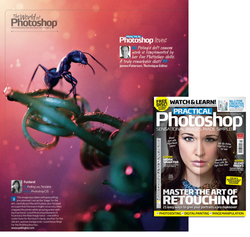 "A section of my work appeared in Practical Photoshop Magazine Gallery, July issue 2012. Small print blow my profile image.   Funland by Peiling Lee. This image was taken with everything pre-planned. I set up the ""stage"" for the ant, carefully put the ant in place, pre-focused and snapped the photo while spraying water with my free hand. I used Photoshop Elements 9 to process the Raw image twice - one with a cooler tone for the insect's body, another for the vibrant, warmer background. I used Noise Ninja for the finishing touches. www.peilinglee.com"