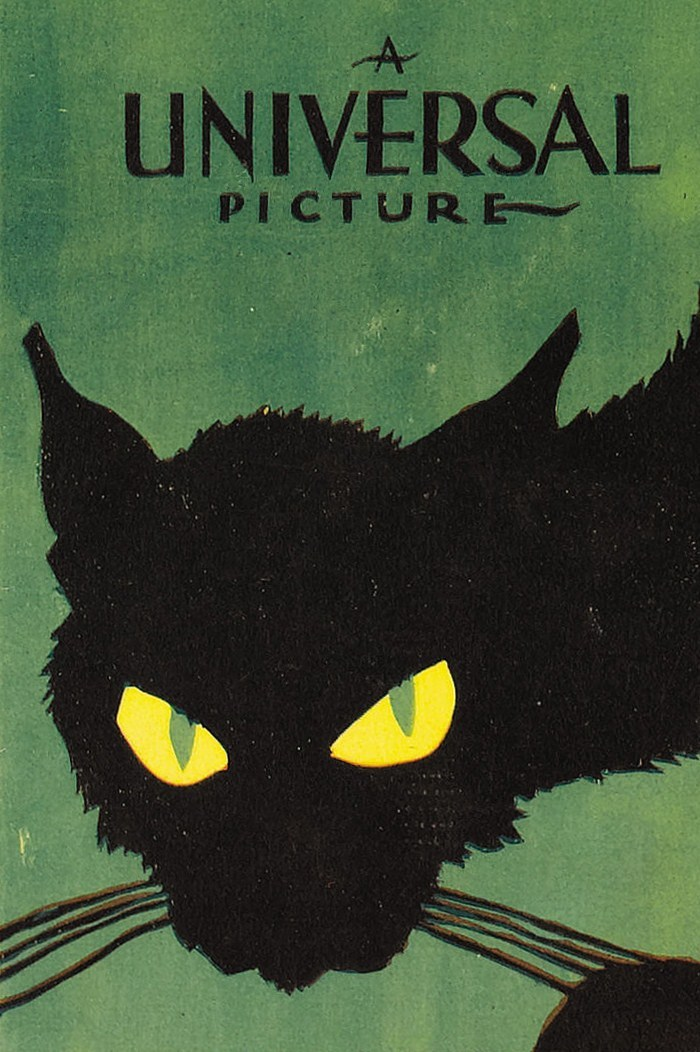 anantoinetteaffair:   Poster art for 'The Black Cat' (1934)