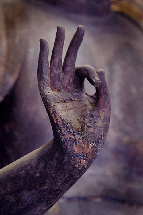 Abhaya Mudra: Protection, Reassurance, Blessing Abhaya in Sanskrit means fearlessness. Thus this mudra symbolizes protection, peace, and the dispelling of fear. It is made with the right hand raised to shoulder height, the arm crooked, the palm of the hand facing outward, and the fingers upright and joined. The left hand hangs down at the side of the body.  (via harvestheart:)