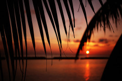 Sunset in Kurumba Maldives.Getting dark. on Flickr.